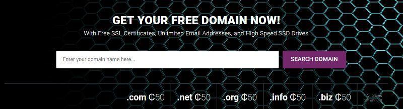 domain search bar